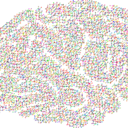 cranium 2099083